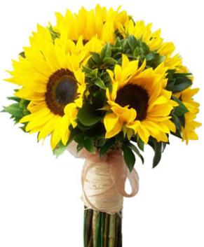Bó hoa hướng dương ánh mặt trời HT162