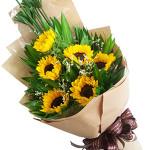 Bó hoa hướng dương ban mai HT170