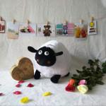Cừu bông TBCB