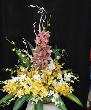 Giỏ hoa lan HT017