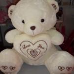 Gấu bông ôm tim TB005