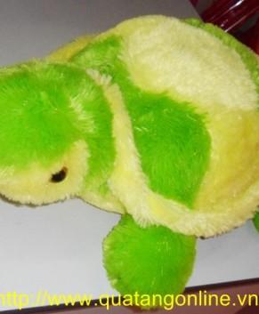 Rùa bông TB024